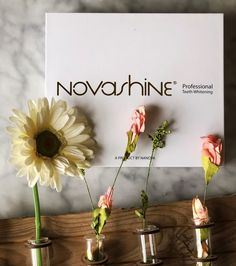 Spring has sprung! Here's to a brighter you! #brighteryou #novashine #teeth #smile #beauty #flowers #growth