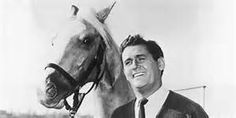 Alan Young -  An English-Canadian-American actor, voice artist, comedian, radio host, television host and personality best known for his role as Wilbur Post in the television comedy series Mister Ed and as the voice of Scrooge McDuck in Disney films, TV series and video games. He passed away on 05/19/2016 of natural causes.  He was 96.  RIP