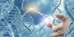 Variations of TP73 Gene Contribute to ALS Disease Mechanism, Study Suggests | ALS News Today