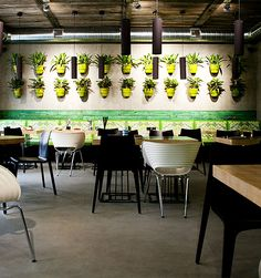 """Fresh"" Restaurant in Moscow: Vegetarian Design | Basil Green Pencil"