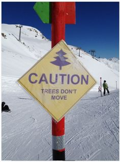 CAUTION... TREES DON'T MOVE