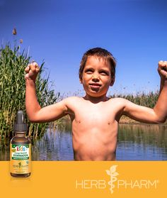 Kids Echinacea Glycerite for Immune Support. Keep his immune system as tough as he is with support from Kids Echinacea Glycerite: https://www.herb-pharm.com/products/product-detail/kids-echinacea-glycerite