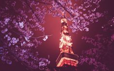 [ Tokyo Tower High And Amazing ] Cherry Blossom Wallpaper, Cherry Blossom Background, Cherry Blossom Tree, Tokyo Tower, Japan Anime City, Pink Flowering Trees, Landscape Photos, Trees To Plant, Purple Flowers