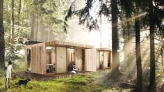 Sustainer Homes - Forest Hotel Forest Hotel, Modular Homes, Clever Design, Worlds Of Fun, Sustainability, New Homes, Cabin, Studio, House Styles