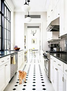 Inspired Black and White Kitchen Designs 7