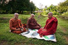 Buddhist nuns, Anuradhapura, Sri Lanka Buddhist Nun, Picnic Blanket, Outdoor Blanket, Cultural Studies, Tour Operator, Maldives, Family Life, Diversity, Sri Lanka