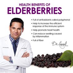 Once considered a Holy Tree due to its ability to improve health and longevity. Elderberries are full of powerful nutrition and have incredible health benefits.  Research is being done to discover more benefits of this dark blue, purplish berry. Elderberries are loaded with anthocyanin which is a polyphenol.  Anthocyanin gives elderberries their dark color.  Research