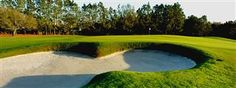 Carrollwood Country Club Events | Best Golf Course & Country Club In Tampa!
