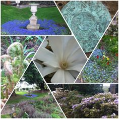 """See 11 photos and 1 tip from 79 visitors to Dr Neils Garden. """"This is a beautiful hidden garden full of intrigue and serenity. Edinburgh, Hidden Garden, Short Break, Index, Great Places, Serenity, New Experience, Things To Do, Beautiful"""