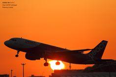 福岡空港 : 飛行機写真 ~旅客機に魅せられて~Fukuoka Airport Peach Aviation, Niigata, Jet Plane, Concorde, Airplanes, Scenery, Aircraft, Japan, Sunset