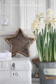 Oma koti onnenpesä: Pääsiäisen tunnelmapalat
