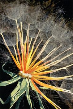 Dandelion - art quilt by Kate Themel -- much glorious stuff at her web site, and cards for sale