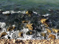 kilyosta deniz kenarı