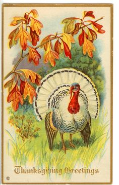 Vintage Thanksgiving Clip Art White Turkey The Graphics Fairy - Clipart Suggest Thanksgiving Graphics, Vintage Thanksgiving, Thanksgiving Crafts, Vintage Holiday, Thanksgiving Decorations, Vintage Halloween, Fall Halloween, Vintage Fall, Thanksgiving Wallpaper