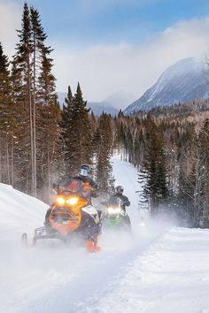 Are you ready to enjoy the many snowmobile rides available in Gaspésie? Here are 5 snowmobile rides that will give you the opportunity to enjoy abundant snow on over 3000 km of groomed and marked trails in Gaspésie. Kawasaki Motorcycles, Triumph Motorcycles, Custom Motorcycles, Motorcycle Quotes, Girl Motorcycle, Dirt Bike Girl, Antique Tractors, Dirtbikes, Modified Cars
