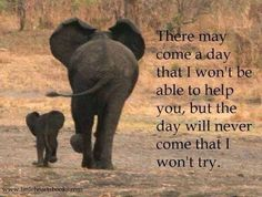 Love this! & Cam knows how much I love elephants because they are amazing mothers!! Google it ;)