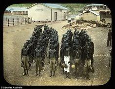 Aboriginal prisoners held at Wyndam Police Station, East Kimberley, in Western Australia 1905 Us History, African History, Black History, Racism In Australia, Western Australia, Aboriginal People, Aboriginal Art, Australian Aboriginal History, Stone Age People