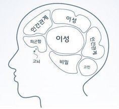 ::굿가이:: :: 뇌를 통해 또 다른 인간을 보다, '호문쿨루스'