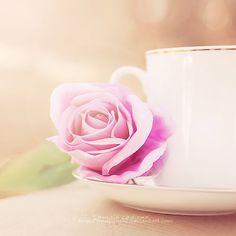 Tea break  by *fruitpunch1  Photography / Still Life / Cut Flower & Plant Arrangement©2012 *fruitpunch1
