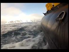 """The next time someone asks """"Why would anybody want to visit Antarctica or the Arctic?"""" Show them this video. #travel"""