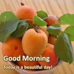 น่าทานมาก🍊🍊🍊 Hindi Good Morning Quotes, Good Morning Cards, Good Morning Messages, Good Morning Good Night, Good Morning Wishes, Good Morning Images, Morning Qoutes, Good Morning Motivation, Good Morning Thursday