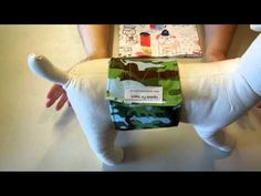 Belly bands for male dogs, dog diapers, bands that stay on