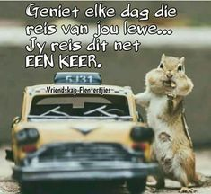 Goeie More, Afrikaans Quotes, Good Morning Wishes, Sayings, Birthday Cards, Happy Birthday, Garden, Motivational, Scrapbooking