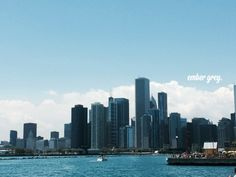 Chicago skyline from Navy Pier  #project52