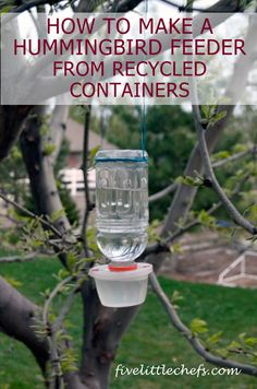 You don't need a fancy feeder to attract hummingbirds to your backyard; instead, save some green by making one of these recycled crafts. Learn how to make this Homemade Hummingbird Feeder and watch the feathered friends flock in! Diy Bird Feeder, Humming Bird Feeders, How To Attract Hummingbirds, How To Attract Birds, Summer Crafts, Summer Fun, Summer Time, Homemade Hummingbird Feeder, Outdoor Crafts