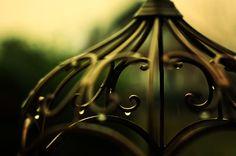 Oliver Petry ~Bild Brille