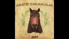 Camera Phone, Moose Art, Ss, Kitchen, Animals, Musica, Acoustic, Cooking, Animales