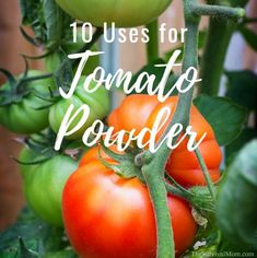 10 Uses for Tomato Powder via The Survival Mom