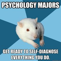 Counseling Psychology what are major