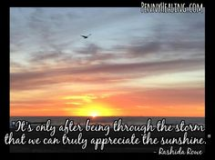 It's only after being through the storm that we can truly appreciate the sunshine. -Rashida Rowe
