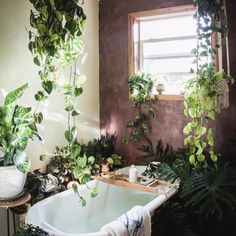 Plant Overload - Plants can add so much life and color to a home, and we love the idea of going absolutely bananaswith them, especially in a bathroom. This photofeels like it belongs to a tropical resort, but you can easily recreate it in even the most urban of environments. We also absolutely adore the look of snake plants placed under a bathroom sink, as shown here. If you're looking for some incredibleplant art to add to your home, check out Plant The Future, our newest obsession.