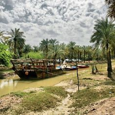 Palm groves in the Arvand Rood River, Abadan, Persian Gulf:  The Arvand Rood River flows in the townships of Khoram Shahr, Abadan and to the west of the Minoo Island, as well as on the borders of Iran and Iraq. This river is known as the Shat-ol-Arab in Iraq and has been formed by meeting two rivers of Tigris and Euphrates. These join at a place called Qarneh, 110 km. southwest of Abadan and flow alongside the city of Basra.