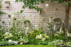 Looking for garden fence ideas? There are a number of ideas for upcycling older items into garden fence décor. Window frames, with or without the glass, are a popular choice. Using a window frame on the garden fence gives the garden a charming look. Unique Gardens, Back Gardens, Amazing Gardens, Beautiful Gardens, Garden Fencing, Garden Beds, Garden Privacy, White Garden Fence, White Fence