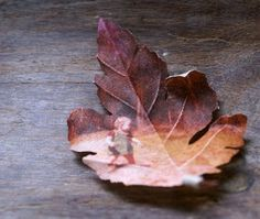 print old photos onto unbleached cotton to look like leaves