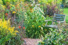 Weelderige tuinen zijn een lust voor het oog. Kijk op TuinTuin.nl voor talloze voorbeelden van weelderige tuinen en laat je inspireren aan de hand van duizenden foto's en honderden blogs.