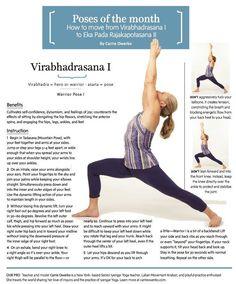51 best introductory level i images  iyengar yoga yoga