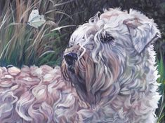 Wheaten Terrier portrait CANVAS print of LA Shepard by TheDogLover, $39.99