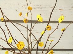 ehrfurchtiges wohnzimmer lampe yam liste pic oder faeeddccdeffa anemone flower flower bouquets