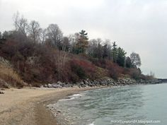 There are still some fall colors--red leaves on sumac trees--on the shore of Lake Michigan in Lake Forest, Illinois in late November.