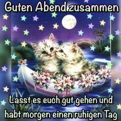 Schönen Abend German Language, Good Night, Humor, Memes, Cats, Christian Dating, Dating Advice, Petra, Animals