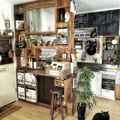 猫と植物の共存/ARALE WORKS/ツンツン/サボテン/【植中毒】/クラフト袋…などのインテリア実例 - 2016-07-05 20:15:05 | RoomClip(ルームクリップ)