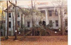 Hilton Head Island, South Carolina, USA Mansion abandoned to Nature.