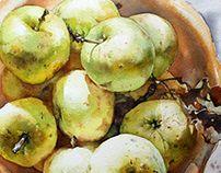 Rustic apples in bowl