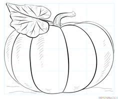 Drawings Easy How to draw a pumpkin step by step. Drawing tutorials for kids and beginners.