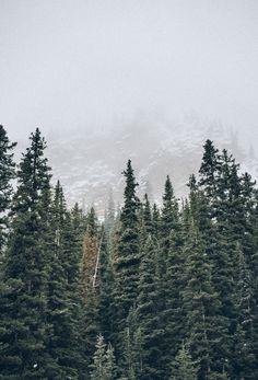 rustically:   Banff, Canada | Nathaniel Martin