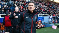 Stade toulousain: Champions Cup ou Top 14? Guy Novès avoue se poser la question - Champions Cup 2014-2015 - Rugby - Rugbyrama